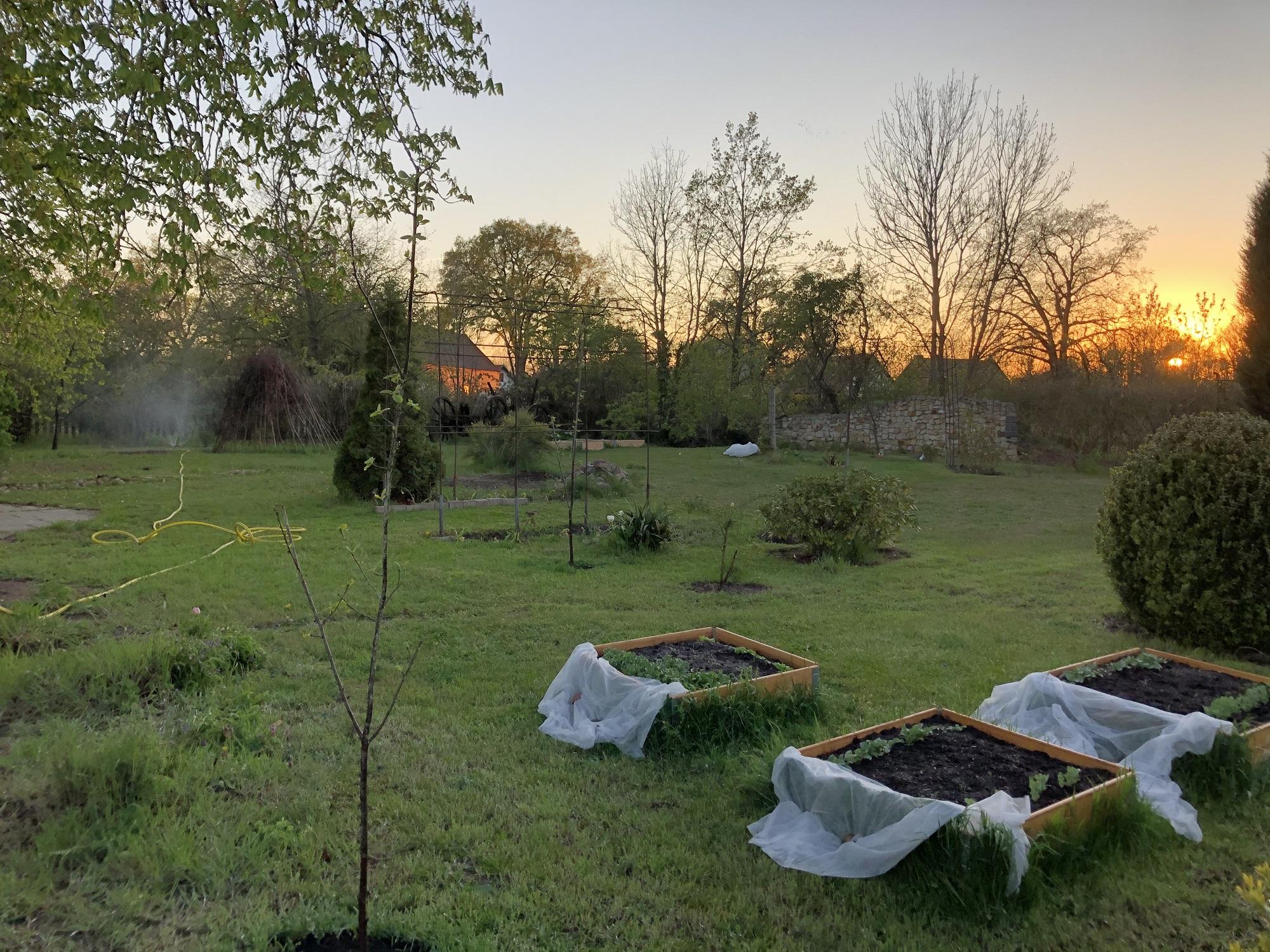 Vorbereitung der diesjährigen Gartenplanung