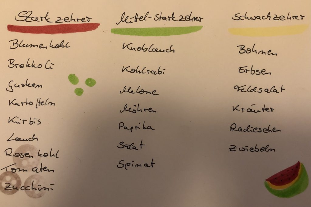Kategorie der Gemüsesorten